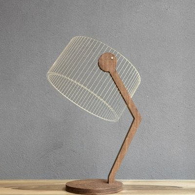 3d Lamp Lampshade