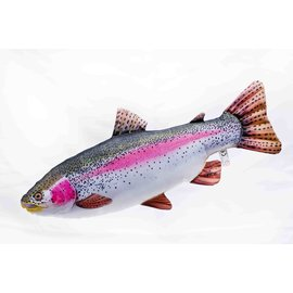 The Rainbow trout  (62 cm)