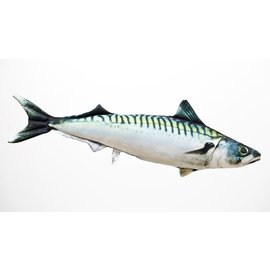 Gaby The Atlantic Mackerel  (60 cm)