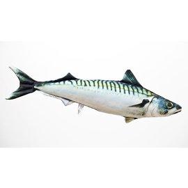 Gaby The Atlantic Mackerel  (60 cm)