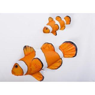 The Ocellaris Clownfish