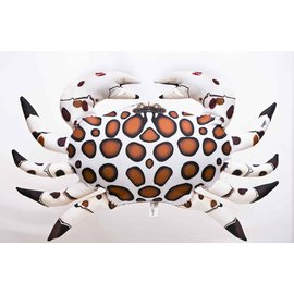Gaby The Calico Crab  (60 cm)