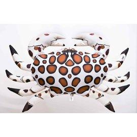 Gaby The Calico Crab  (60 cm)