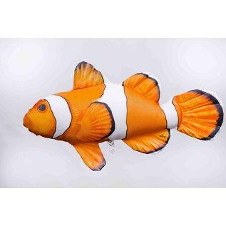 Gaby The Ocellaris Clownfish