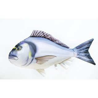 Gaby The Gilthead Sea Bream  (60 cm)