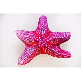 Gaby The Starfish  (55 cm)