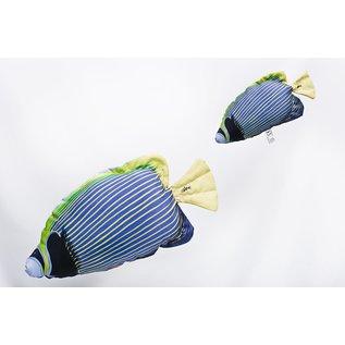 The Emperor Angelfish white