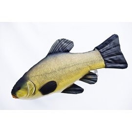 Gaby The Tench  (60 cm)