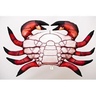 Gaby The Common Crab