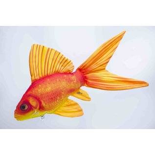 The Gold Fish  (60 cm)