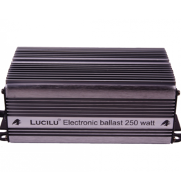 Lucilu Digital 250 W