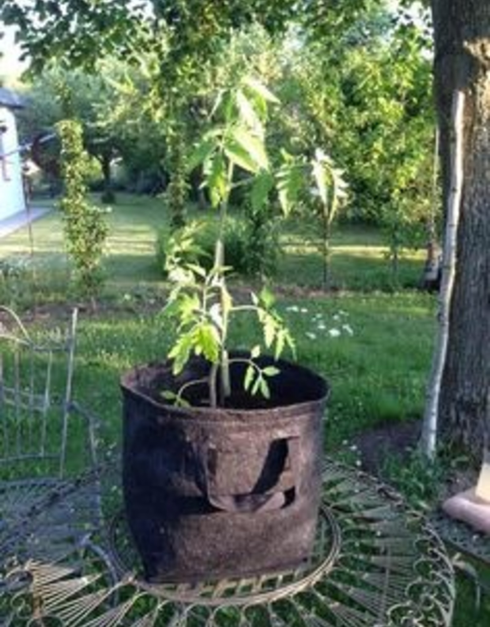 GardenHighPro GHP Pro Pot 20l
