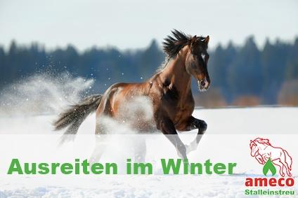 Ausreiten im Winter- Worauf Sie achten sollten