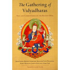 Snow Lion The Gathering of Vidyadharas - Text and Commentaries on the Rigdzin Düpa - Translated by Gyurme Avertin