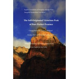 Jim Valby Publications The Self-Originated Victorious Peak of Pure Perfect Presence - by Nubchen Sangye Yeshe - Translated by Jim Valby