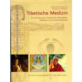 AT Verlag Tibetische Medizin: Eine Einführung in Geschichte, Philosophie, Heilpraxis und Arzneimittelkunde,  von Khenrab Gyamtso und Stephan Kölliker