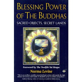 Element Books Dorset Blessing Power of the Buddhas: Sacred Objects, Secret Lands, by Norma Levine