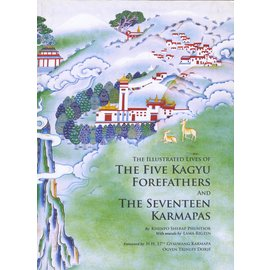 Thrangu Tashi Choling Monastery Kathmandu The Illustrated Lives of the Five Kagyu Forefathers and the  Seventeen Karmapas, by Khenpo Sherap Phuntsok