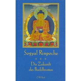 O.W. Barth Die Zukunft des Buddhismus, von Sogyal Rinpoche
