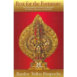 Rinchen Publications Kingston Reast for the Fortunate, by Bardor Tulku Rinpoche