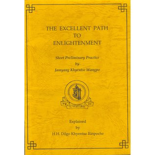 Shechen Tennyi Dargyeling The Excellent Path to enlightenment, by Jamyang Khyentse Wangpo, Dilgo Khyentse