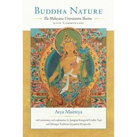 Snow Lion Publications Buddha Nature, by Arya Maitreya