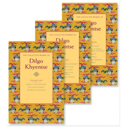 Shambhala The Collected Works of Dilgo Khyentse, 3 Volumes, by Matthieu Ricard and Vivan Kurz