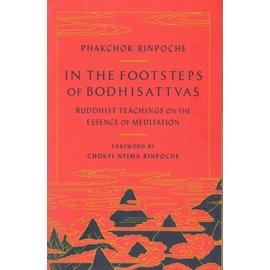 Shambhala In the Footsteps od Bodhisattvas, by Pakchok Rinpoche