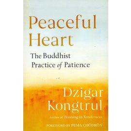Shambhala Peaceful Heart: The Buddhist Practice of Patience, by Dzigar Kongtrul