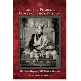Snow Lion Publications Light of Fearless Indestructible Wisdom, by Khenpo Tsewang Dongyal