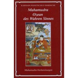 Theseus Verlag Mahamudra,  Ozean des Wahren Seins: Mahamudra Vorbereitungen