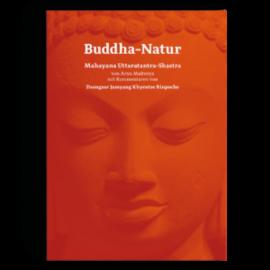 Manjughosha Edition Buddha-Natur, von Arya Maitreya und Dzongsar Jamyang Khyentse Rinpoche