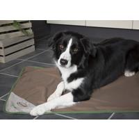Scruffs® Scruffs Insect Shield Hundedecke