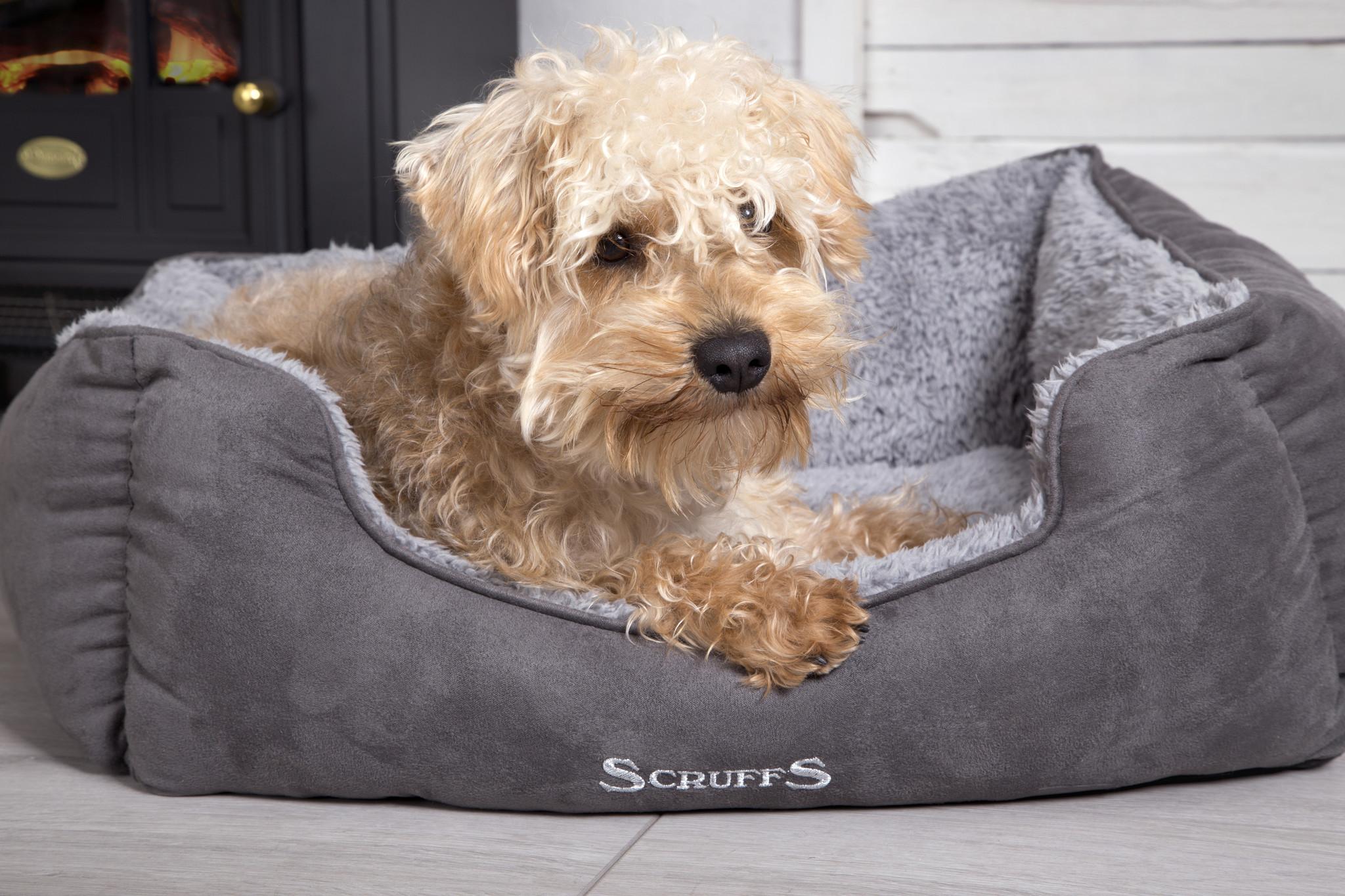 Pleasing Scruffs Scruffs Cosy Box Bed Inzonedesignstudio Interior Chair Design Inzonedesignstudiocom