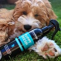 Animology Animology Puppy Fresh Refreshing Spray