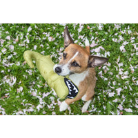 Beco Pets Beco Plush Toy - Aretha the Alligator