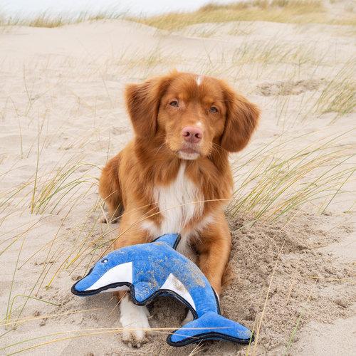 Beco Pets Beco Plush Toy - David der Delfinn