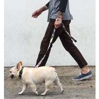 Wolfgang Wolfgang - StreetLogic Leash