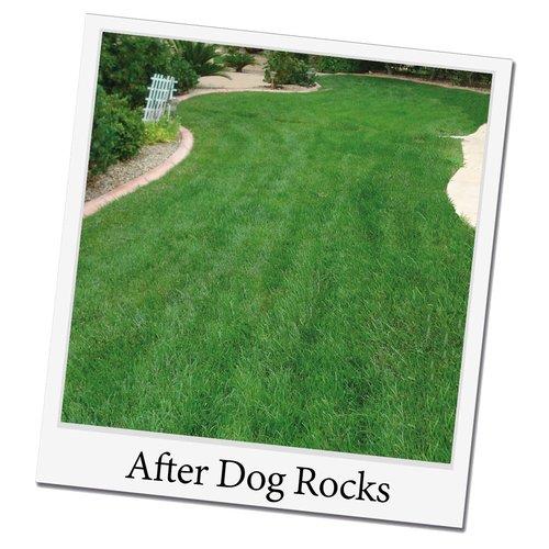 Dogrocks Dog Rocks Natur-Steine