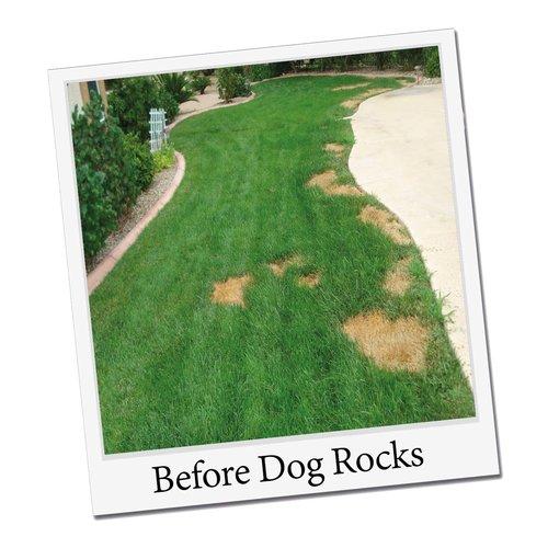 Dogrocks Dog Rocks Natuursteen