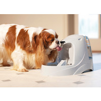 Drinkwell Drinkwell® Platinum Pet Fountain - 5 litres