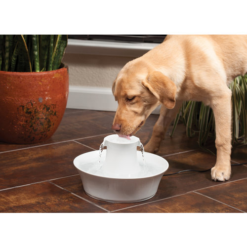 Drinkwell Drinkwell® Avalon Pet Fountain - 2 L