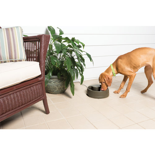 Drinkwell Drinkwell® Current Pet Fountain