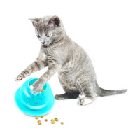 PetSafe® Petsafe® Fischschalen-Katzenfutterspielzeug