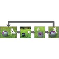 PetSafe® Petsafe® Automatischer Ballwerfer