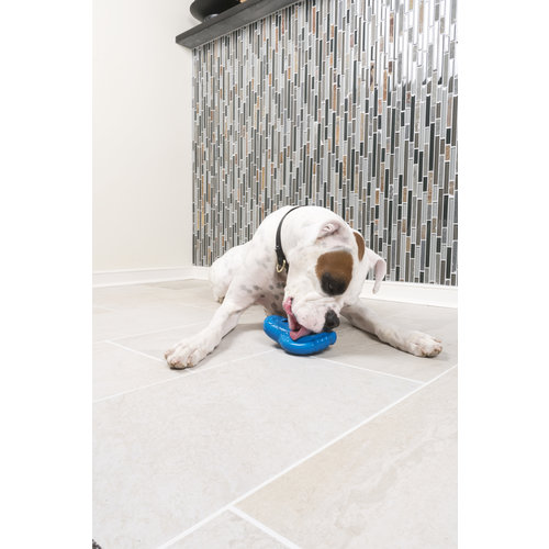 PetSafe® PetSafe® Chilly Penguin Freezer Toy