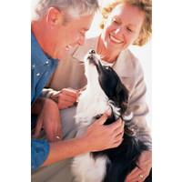 PetSafe® PetSafe® Ultrasonic Remote Trainer