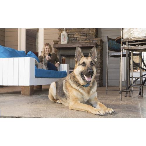 PetSafe® PetSafe® Smart Dog Trainer
