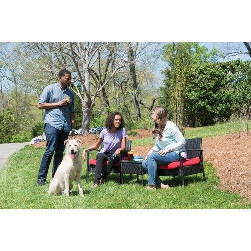 PetSafe® PetSafe® Remote Trainer 600M