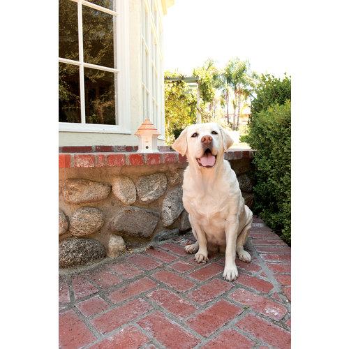 PetSafe® PetSafe® Deluxe Outdoor Bark Control